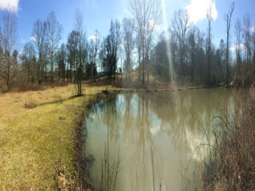 14 Acres - Commercial : Odenville : Saint Clair County : Alabama