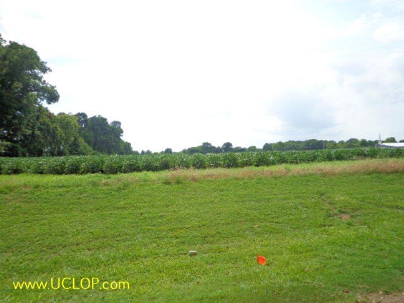 15+/- Acres Raw Commercial Land : Bunkie : Avoyelles Parish : Louisiana