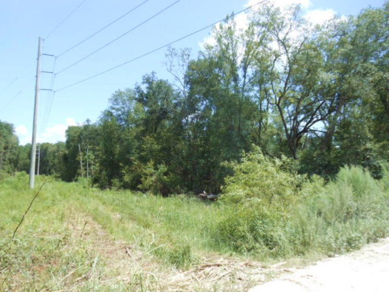 64+ Acres For Future Growth : Live Oak : Suwannee County : Florida