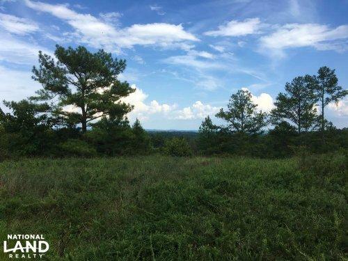 The Kimberly I-65 Development Tract : Kimberly : Jefferson County : Alabama