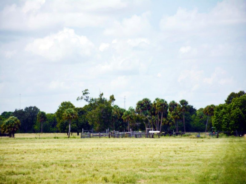 Edsalls 53 Acres : Fort Pierce : Saint Lucie County : Florida