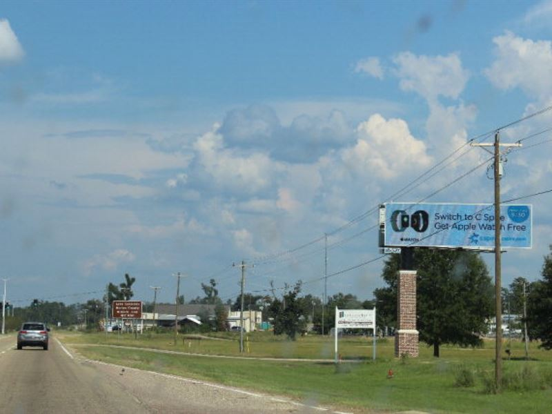Commercial Development Land For Sal : Columbia : Marion County : Mississippi