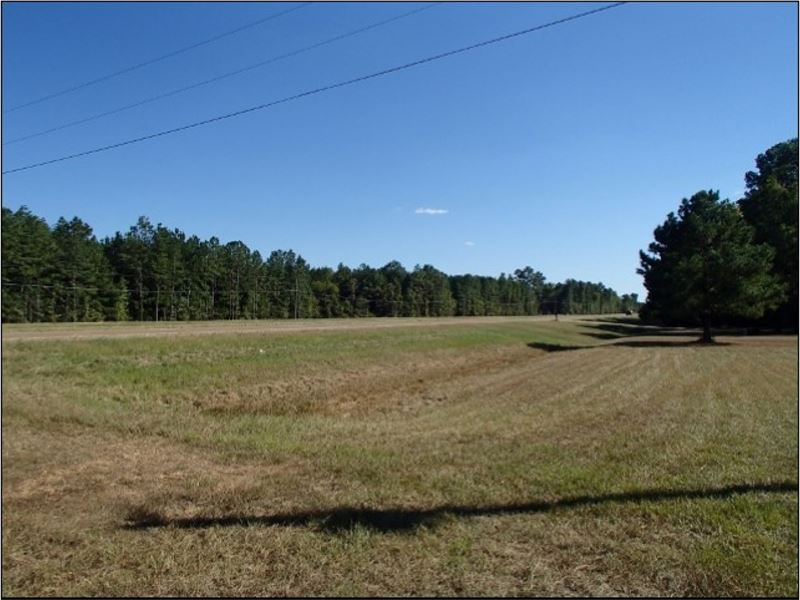 35 Acres In Lowndes County In Colum : Columbus : Lowndes County : Mississippi