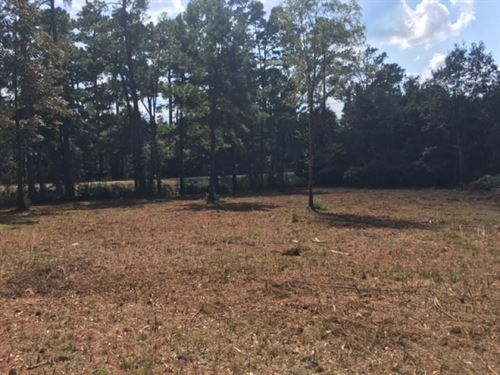 5.28 Acres, Amite County, Ms : Liberty : Amite County : Mississippi