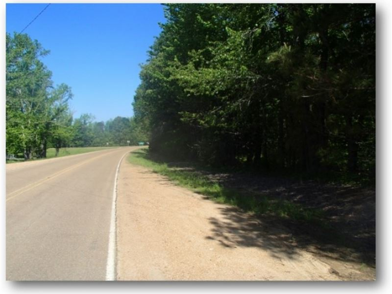 4 Acres In Carroll County In Vaiden : Vaiden : Carroll County : Mississippi