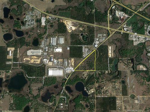 47 Acres In Groveland : Groveland : Lake County : Florida