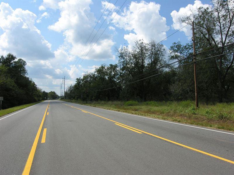 49.83 Acres Development Property : Waynesboro : Burke County : Georgia
