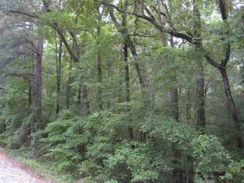 Williamson Way Tract 1 of Caddo : Shreveport : Caddo Parish : Louisiana