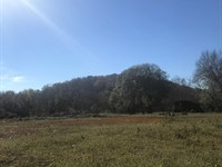 9+/-Acres Residential Or Commerical : Jasper : Marion County : Tennessee