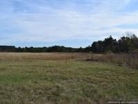 Surveyed Acreage : Jackson : Hinds County : Mississippi