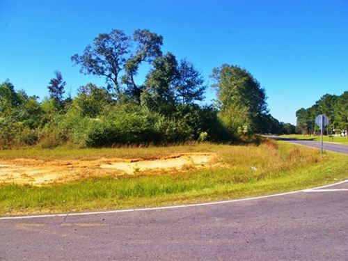 15 Acres For Sale Near Ms/La State : Magnolia : Pike County : Mississippi