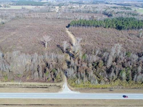 Reduced, 93 Acres of Developmenta : Greenville : Pitt County : North Carolina