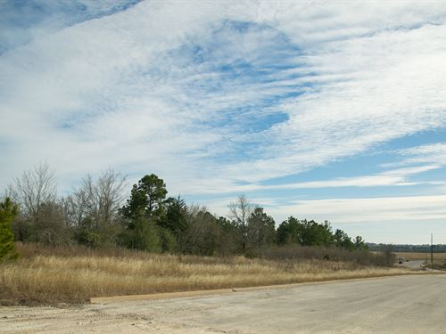 165 Ac Fm 247 & Fm 2821 Commercial : Huntsvile : Walker County : Texas
