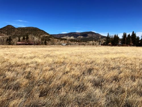 Commercial Mall Tract Lots : South Fork : Rio Grande County : Colorado