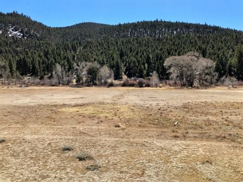 Commercial Mall Tract Lot 4 : South Fork : Rio Grande County : Colorado