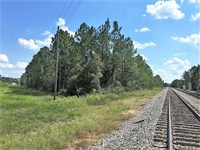 10.58 Acres Land For Sale in Charl : Folkston : Charlton County : Georgia