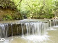 Jake Peavy's Southern Falls Plantat : Catherine : Wilcox County : Alabama