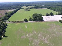 Hardee Farms In Chiefland, Florida : Chiefland : Levy County : Florida