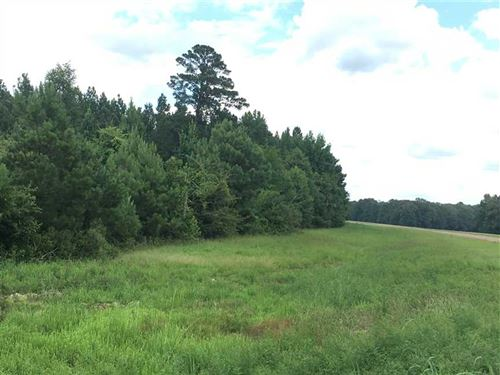 40 Acres Just Reduced, Timber : Ludlow : Scott County : Mississippi