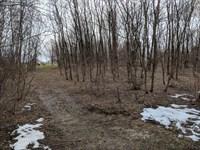 Lot 3 Hanley Road : Hannibal : Oswego County : New York