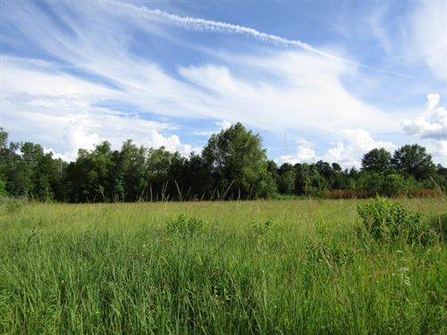30 Acres In Hinds County On Robinso : Jackson : Hinds County : Mississippi