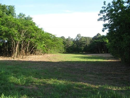 Commercial Land Adamsville, TN 2.03 : Adamsville : McNairy County : Tennessee