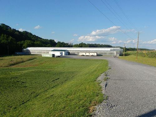 Greene County Greenhouse Equipment : Chuckey : Greene County : Tennessee