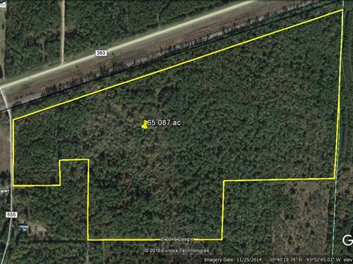 65.087 Acres In Kirbyville Texas : Kirbyville : Jasper County : Texas