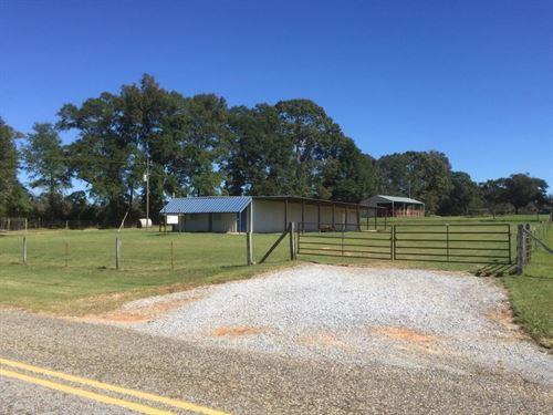 2400 sq ft Metal Commercial : New Brockton : Geneva County : Alabama