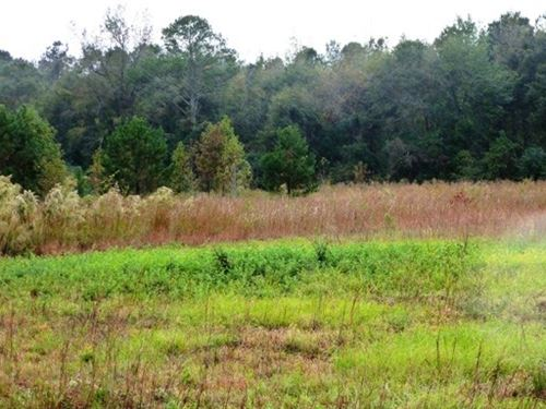 3 Acre Commercial Site-Beulaville : Beulaville : Duplin County : North Carolina