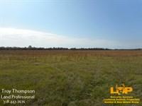 32.86 Acres Commercial : Marksville : Avoyelles Parish : Louisiana