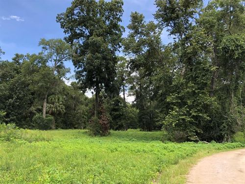 Residential/Commercial Acreage : Chiefland : Levy County : Florida