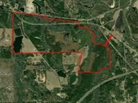 46-016 McCorvey Tract : Tuskegee : Macon County : Alabama