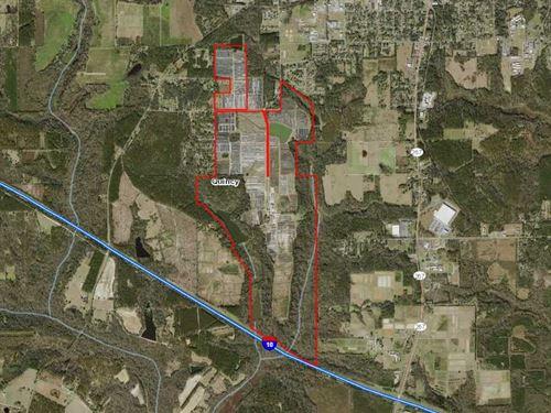 Former Nursery In Gadsden County : Quincy : Gadsden County : Florida