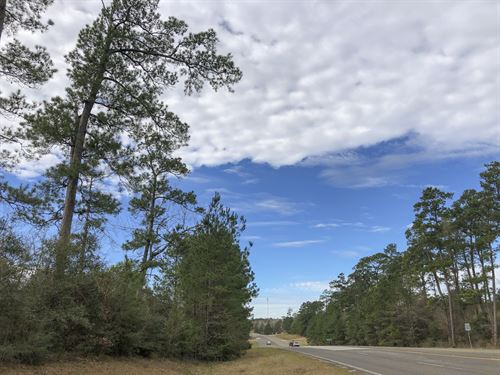 7 Acres Hwy 190 : Woodville : Tyler County : Texas