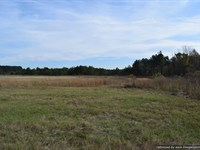 Surveyed Acres With Great Frontage : Jackson : Hinds County : Mississippi