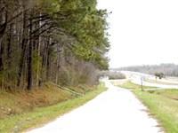Developmental Commercial Land : Williamston : Martin County : North Carolina