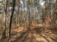 2.924 Ac, Zoned Li Powder Springs : Powder Springs : Cobb County : Georgia