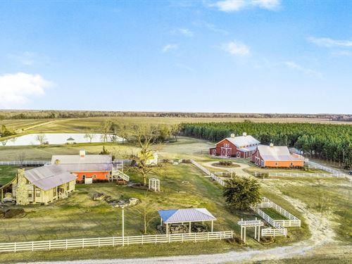 106 Acre Upscale Farm Venue : Hawkinsville : Pulaski County : Georgia