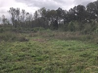 Development Tract 22.672 Acres : Adairsville : Bartow County : Georgia