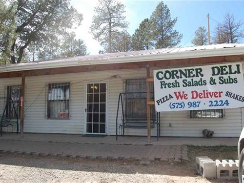 Investment Property New Mexico : Timberon : Otero County : New Mexico