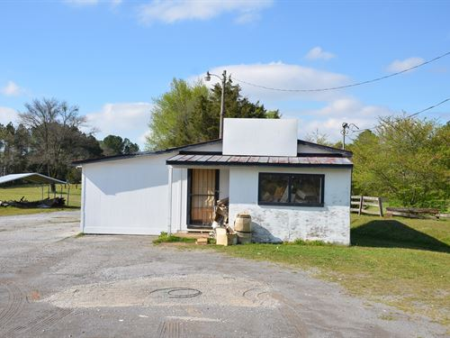 Live Auction Tract 10 .50 : Decatur : Morgan County : Alabama
