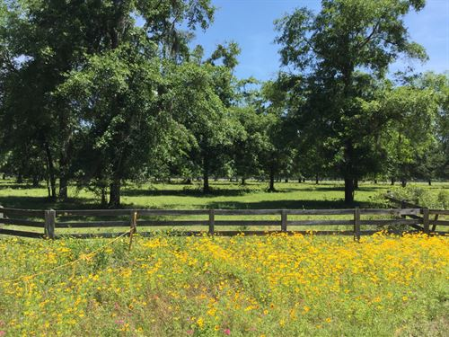 Ranch With Interstate Frontage : Madison : Florida