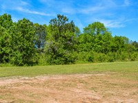 Commercial Lot On Highway 221 : Roebuck : Spartanburg County : South Carolina