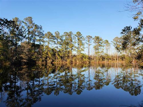 32 Acres of Prime Development : Latta : Dillon County : South Carolina