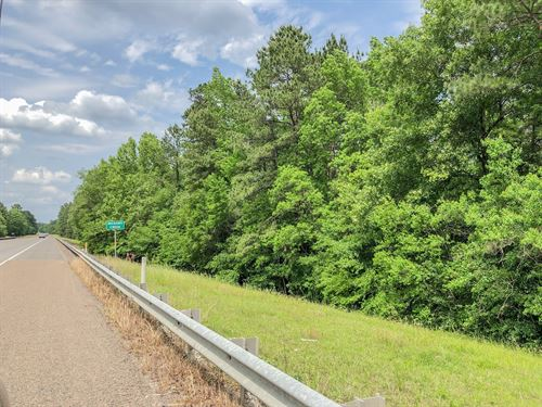 151 Acres Hwy 69 : Warren : Tyler County : Texas