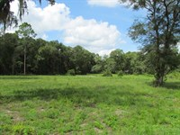 Commercial Lots 777837 : Chiefland : Levy County : Florida