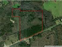 29-050 Chichester Highway 14 North : Elmore : Elmore County : Alabama