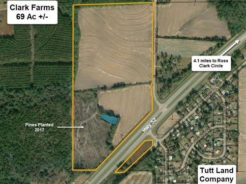Clark Farms Development Opportunity : Taylor : Houston County : Alabama