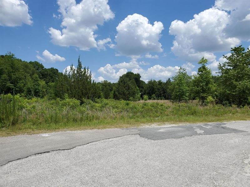 Commercial Acreage, 2.59 Acres : Chiefland : Levy County : Florida